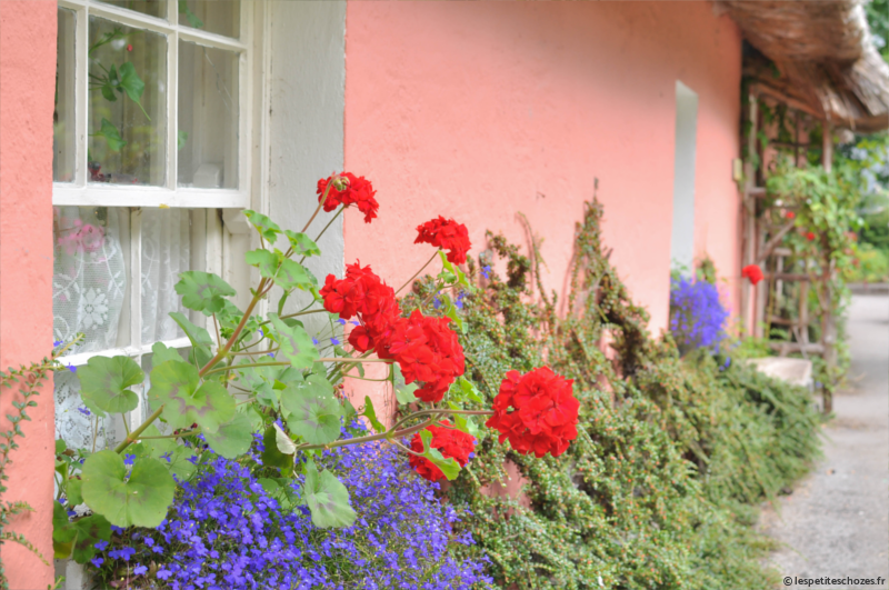 Irlande Bunratty Folk Park Maison rose
