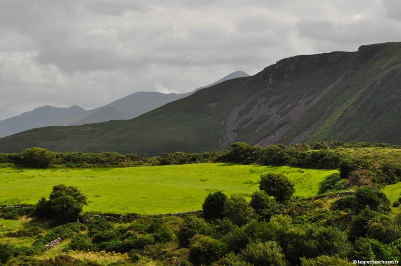 Irlande Ring of Kerry